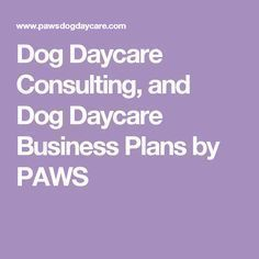 dog daycare consulting and dog daycare business plans by paws startadaycare