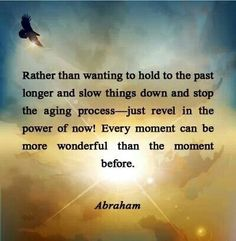 Rather than wanting to hold to the past longer and slow things down and stop the aging process — just revel in the power of now! You can't stop time, and you won't stop the recycling process that is taking place upon this planet, nor would you want to — but you do not have to suffer the moving through time. Every moment can be more wonderful than the moment before. — Abraham