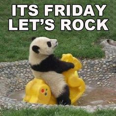 Its Friday Lets Rock quotes quote friday panda days of the week friday quotes friday love