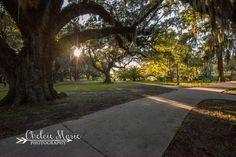 City Park, New Orleans, LA