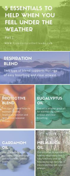 Looking for natural ways to feel better when feeling under the weather?  Click through to learn about 5 essential oils to help when you feel under the weather and to help with easier breathing.