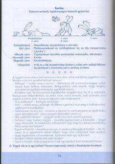 Album Archive - Tág a világ (Mozgásfejlesztés játékosan) Album, Kindergarten, Bullet Journal, School, Warm, Sport, Deporte, Sports, Kindergartens