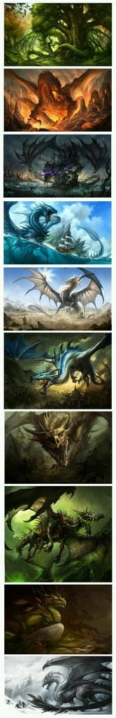 My favorite fantasy animals are dragons, I admire art work like this that shows the different kinds of dragons there are! Types Of Dragons, Cool Dragons, Fantasy Kunst, Dragon Artwork, Mythological Creatures, Magical Creatures, Fantasy Artwork, Creature Design, Fantasy World