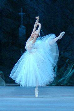 Anna Nikulina as Giselle in Giselle (Bolshoi Ballet) Ballet Images, Ballet Pictures, Dance Pictures, Ballet Art, Ballet Dancers, Ballet Style, Tutu, La Bayadere, Sylphide