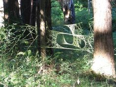 "Environmental Art. Gloria Lamson.  Creating temporary installations using natural or simple manmade materials, Gloria Lamson explores ways to engage natural forces. She often works in remote locations, documenting her work through photography. She has a beautiful series titled ""Drawing in the Land"" looking at how lines activate our awareness of space."