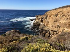 Point Lobos State Reserve, Highway 1, USA #roadtrip