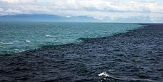 Gulf of Alaska, Where Two Oceans Meet But Never Mix - Lateet Two Oceans Meet, Adventure Town, Costa, Kodiak Island, Gulf Of Alaska, Alaska The Last Frontier, Alaska Fishing, Water Pictures, Arabian Sea