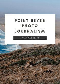 Point Reyes Photojournalism
