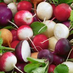 Λαχανικά (ΚΤ)