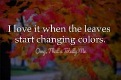 OMG, That's Totally Me -I love it when the leaves start changing colors.