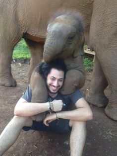 This baby elephant who just made a new best bud.