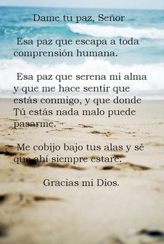 Mucha paz tienen los que aman tu ley,Y no hay para ellos tropiezo. Salmos 119:165 ♥ God Prayer, Prayer Quotes, Faith Quotes, Bible Quotes, Bible Verses, True Quotes, Qoutes, Frases Dela, Spanish Prayers
