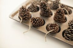 DIY Pinecone Fire Starters