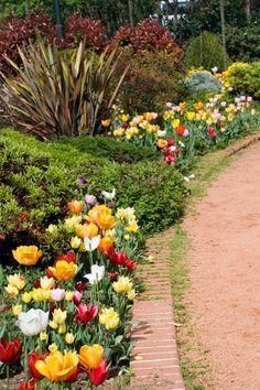 620 Flower Garden Ideas In 2021 Flower Garden Planting