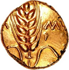 Obverse of Celtic Gold Stater of Cunobelin, king of one of the major tribes in Britannia