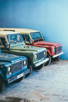 The Two Millennials Behind Dutch Safari Company Are Changing The US Import Game