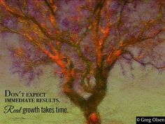 Real growth takes time