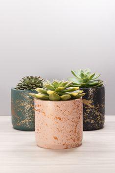 Concrete Pots, Indoor Planters, Concrete Planters, Diy Planters, Painted Flower Pots, Painted Pots, Concrete Crafts, Diy Décoration, Plant Design