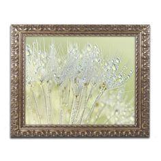 Cora Niele 'Dandelion Dew I' Ornate Framed Art