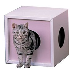Cardboard Cat Box wCorrugated Cat Scratcher Pink TTB4 -- Be sure to check out this awesome product.