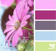 Сочетания цветов   48 фотографий