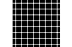 """SCINTILLATING GRID The scintillating grid is an illusion created by superimposing white dots at the intersection of gray lines on a black background. Dark dots seem to appear and disappear at the intersections, and jump around the grid, thus the term """"scintillating."""" Trying to pin down one of the black dots with your gaze is like playing a hands-free version of Wack-a-Mole, as the dark spots only appear in your periphery.  Antonio Miguel de Campos"""