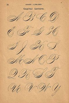 1890s Calligraphy Print Page Capital Letters by forloveofold More