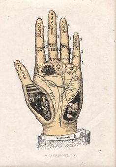 Palmistry - Palm Reading Hand Map - Fortune Telling Illustration Arte, Illustrations, Medical Illustration, Tarot, Symbol Hand, Arte Obscura, Palm Reading, Fortune Telling, Palmistry