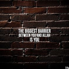 """Made by:Instagram 