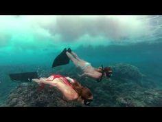 goPro fantasía de ballenas