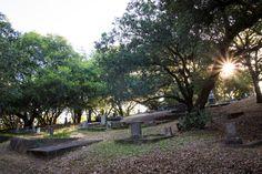 Local History, A 17, Cemetery, Paths, Restoration, Sidewalk, Santa, Tours, Side Walkway