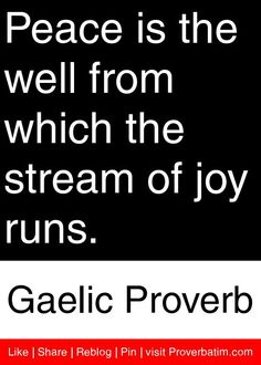 Peace is the well from which the stream of joy runs. - Gaelic Proverb #proverbs #quotes
