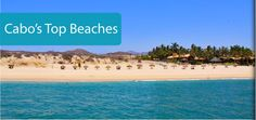 Cabo's Top Beaches