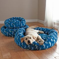 How to Buy the Right Size Bed for Your Dog