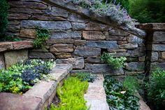 Sedums, Ajuga, etc.  Pockets to plant in step treads.    Buttonwood, Hess Landscape Architects