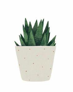 Image of Succulent Kaktus Illustration, Art And Illustration, Illustrations, Cactus Drawing, Cactus Art, Watercolor Plants, Watercolor Art, Wallpaper Minimalista, Plant Art