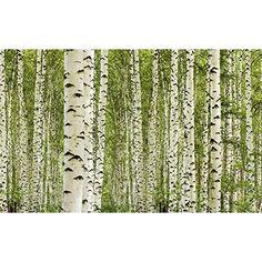 New murando Fototapete Wald x cm VLIES TAPETE PREMIUM PROFI QUALIT T inklusive g Profi Vlies Kleister Top moderne Wanddeko Riesen Wandbild