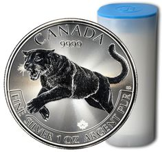 Tube of 25 x 1oz 2016 RCM Predator Series Silver Cougar Coins | Ottawa Bullion - Silver Dealer Ottawa, Gold Dealer Ottawa, Ottawa Silver Bars, Ottawa Gold Bars