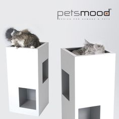gorgeous contemporary cat furniture on modern cat tree png ideas cat furniture pet furniture cat towers contemporary cat furniture Contemporary Cat Furniture, Large Cat Tree, Tree Furniture, Cat Condo, Cat Design, Furniture Collection, Cat Toys, Deco, Dog Cat