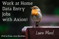 Work at Home  Data Entry  Jobs  with Axion! / Learn More!