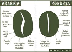 Arabica Bean Vs Robusta Bean - the difference Arabica Robusta, Coffee Chart, Coffee Infographic, Coffee World, Coffee Facts, Coffee Subscription, How To Order Coffee, Coffee Health Benefits, Coffee Love
