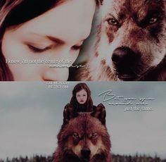 Jacob And Renesmee, Twilight Renesmee, Edward Bella, Edward Cullen, Fandom Quotes, Mackenzie Foy, Twilight Series, Norse Mythology, Jacob Black