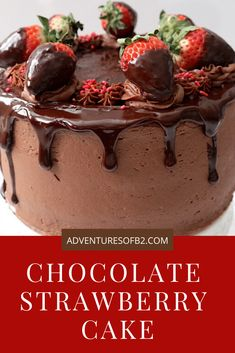 Chocolate Strawberry Cake is the ultimate dessert combination of chocolate and strawberries complete with chocolate covered strawberries on top. Chocolate Strawberry Desserts, Chocolate Ganache Cake, Strawberry Cake Recipes, Chocolate Strawberries, Strawberry Filling, Chocolate Buttercream, Cake Fillings, Cake Toppings, Delicious Desserts
