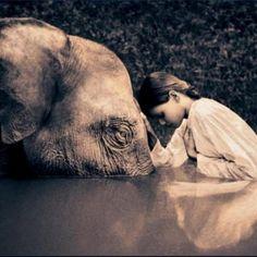 Frases de Buda para sanar el espíritu y alcanzar la iluminación - Cultura Colectiva