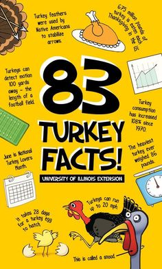 Would make a great TRIVIA GAME 83 Fun Turkey Facts for your amusement this Thanksgiving (Great for the classroom! Thanksgiving Facts, Thanksgiving Preschool, Thanksgiving Traditions, Thanksgiving Parties, Thanksgiving Table, Thanksgiving Countdown, Thanksgiving Writing, Thanksgiving Projects, Thanksgiving Celebration