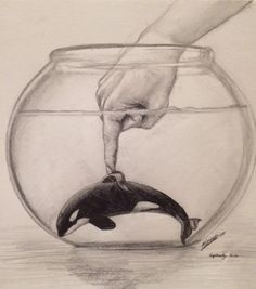 This Heartbreaking Picture by a 13-Year-Old Artist Shows Us Exactly Why Orcas Need to Be Free