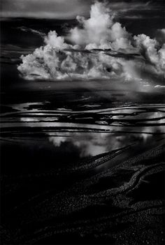 Genesis http://www.taschen.com/pages/en/catalogue/photography/all/02613/facts.sebastio_salgado_genesis.htm