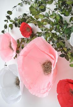 Crepe Paper Flower Party Decor - gorgeous!