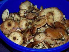 Moje Małe Czarowanie: Kiszone opieńki Stuffed Mushrooms, Canning, Vegetables, Food, Stuff Mushrooms, Essen, Vegetable Recipes, Meals, Home Canning