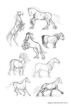 Horse Drawings, Pencil Art Drawings, Cool Art Drawings, Animal Drawings, Drawing Sketches, Easy Horse Drawing, Horse Sketch, Drawing Reference Poses, Animal Sketches
